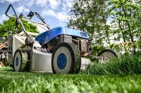 entretien de pelouse